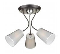 Потолочный светильник FREYA ODRI FR5030CL-03B
