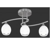 Потолочный светильник TRIO CURVA 605600307