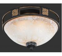 Потолочный светильник TRIO QUINTA 608100224